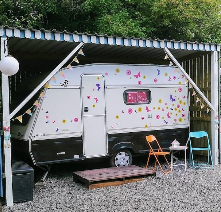 Boyne Valley Glamping - the Vintage Caravan