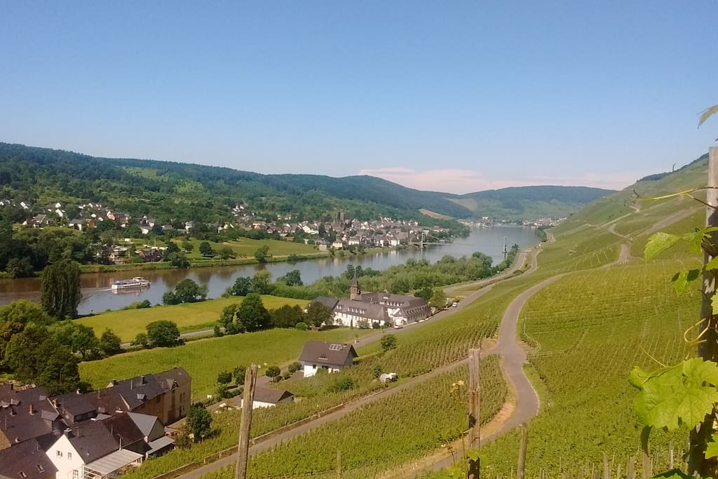 View of the Mosel at a height of 330 metres.
