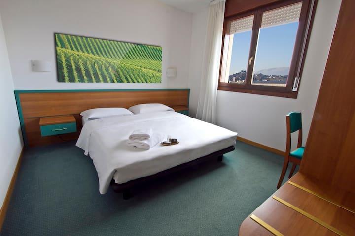 Luxurious Double Economy At Conegliano