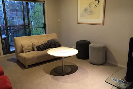 Homey entire apartment in Central location - Lyneham