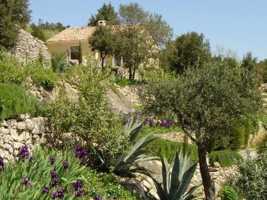 Gîte Rose et ses jardins en terrasses