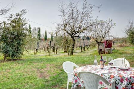 Etruscan Oak Apartment