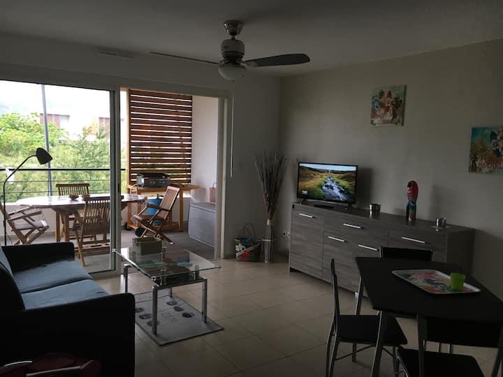 Appartement la Cocoteraie - spacieux, lumineux entouré de verdure