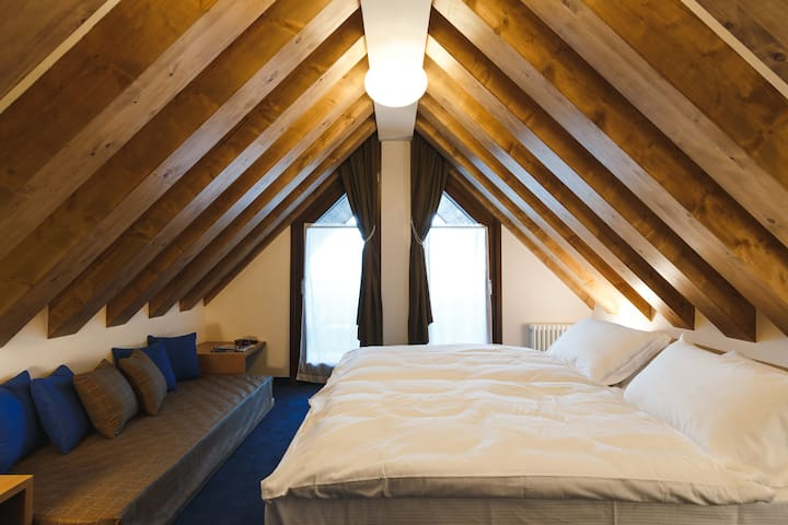 One- Bedroom Superior Apartment
