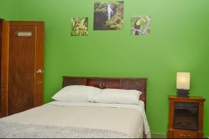 Your is Our green rainforest room. It is bright and cheery with delicate rays of sun peeking through the door windows. It is equipped with a double bed perfect for a single person or couple once comfortable. His room has a faux fireplace nightstand with lamp, a chair and a wardrobe. This room also has a private entrance.