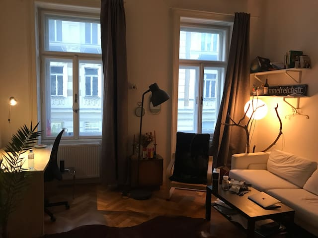 Cozy-Room in the heart of Vienna.