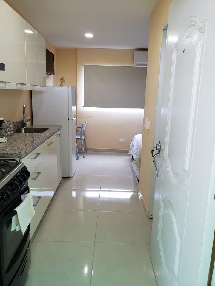 Aparta-hotel Román 7 302 B