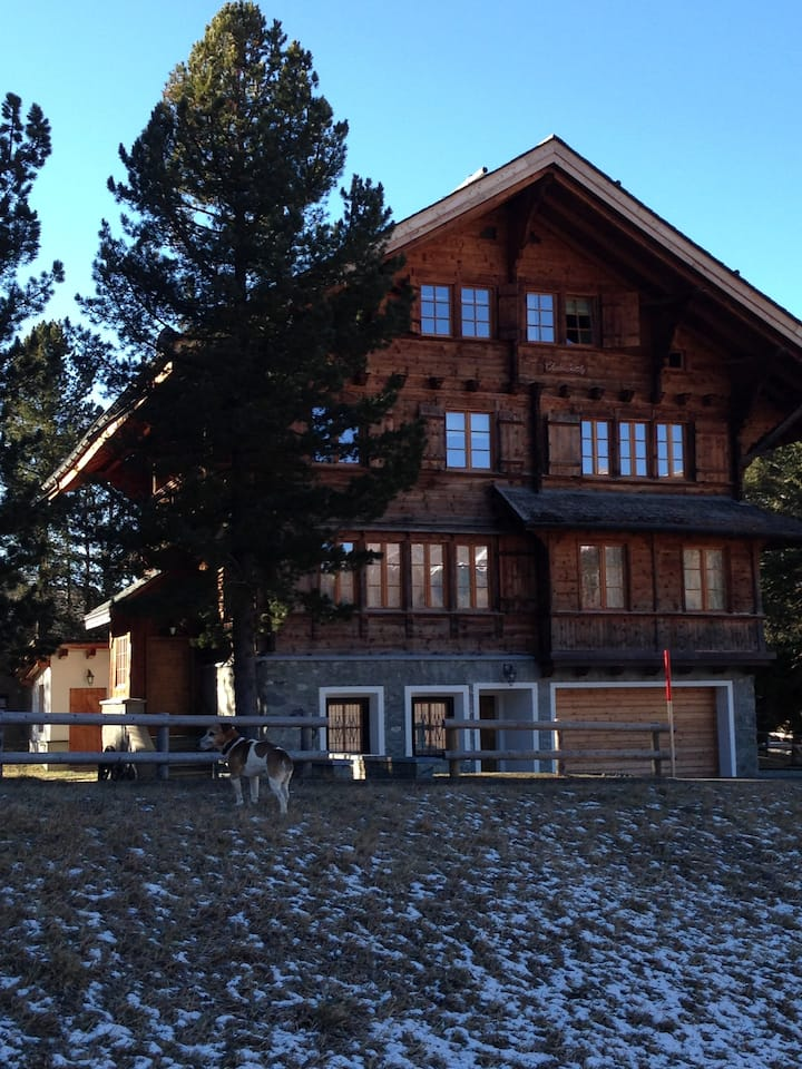 beautiful renovated chalet next to the Corvatsch