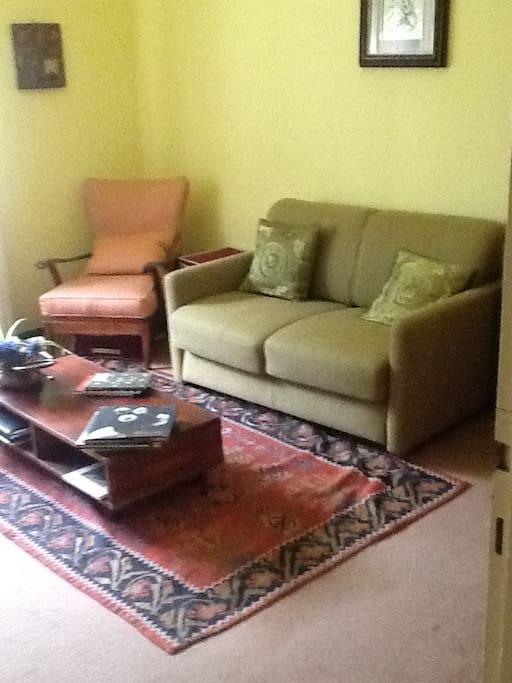 Camera con divano letto 1 piazza e mezza