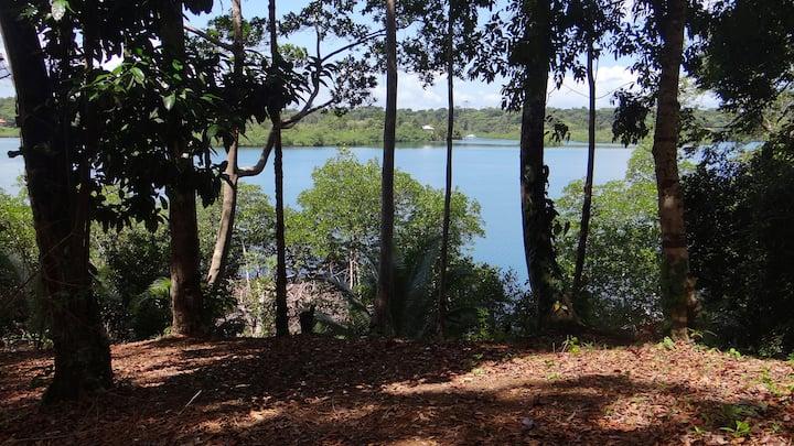 Jungle House - Birds,Monkeys, Flowers, Swim & Hike