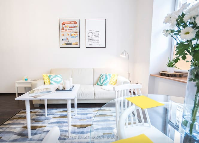 Great space!  Comfy, easy to access - Lodz - Huoneisto