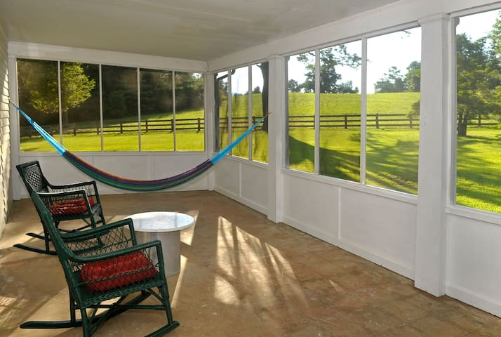 Rocking chairs and a hammock on the porch