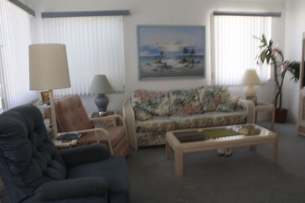 living area, couch and chairs comfortable comforatble