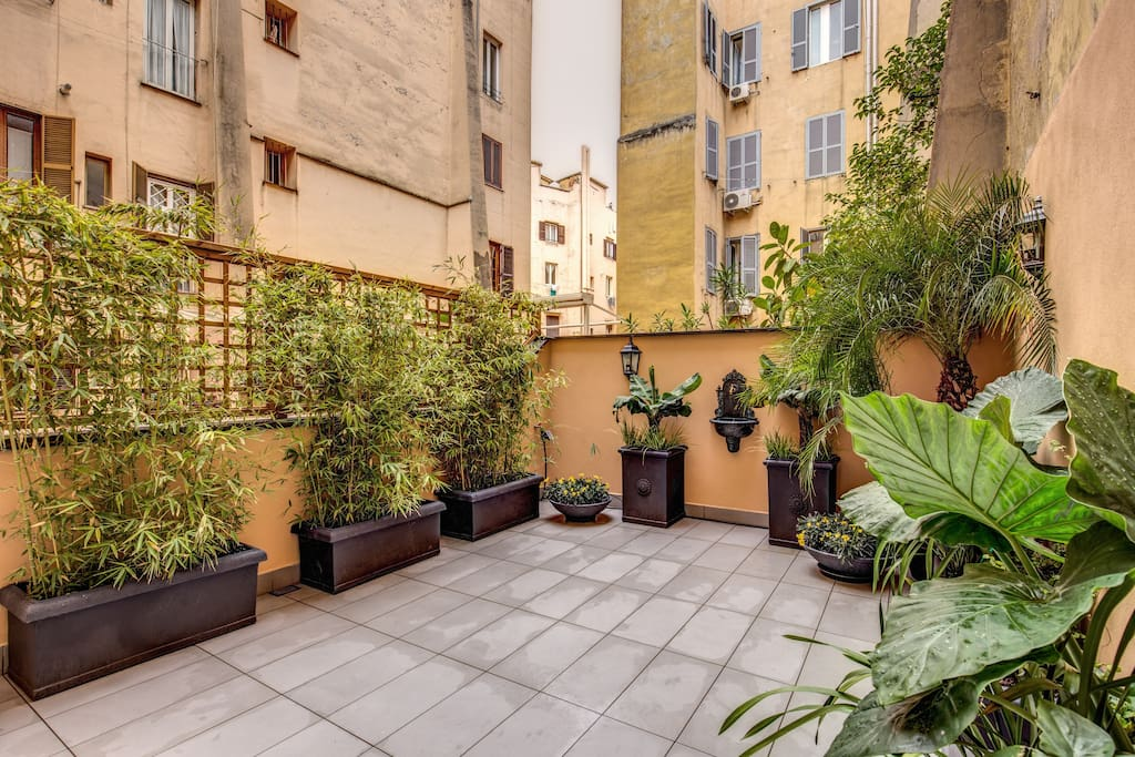Terrace with various plants