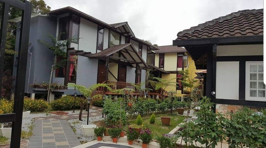Casa Loma Resort - King bed 01
