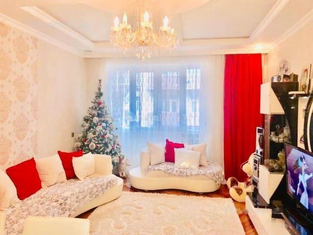 Beautiful apartment on heart of Baku + Transfer
