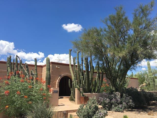Peaceful desert oasis - Tucson - Dom