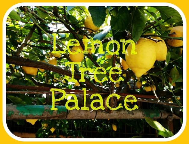Lemon Tree Palace - Nocera Superiore - Hus