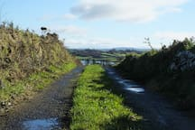 Lane to Rossbrin