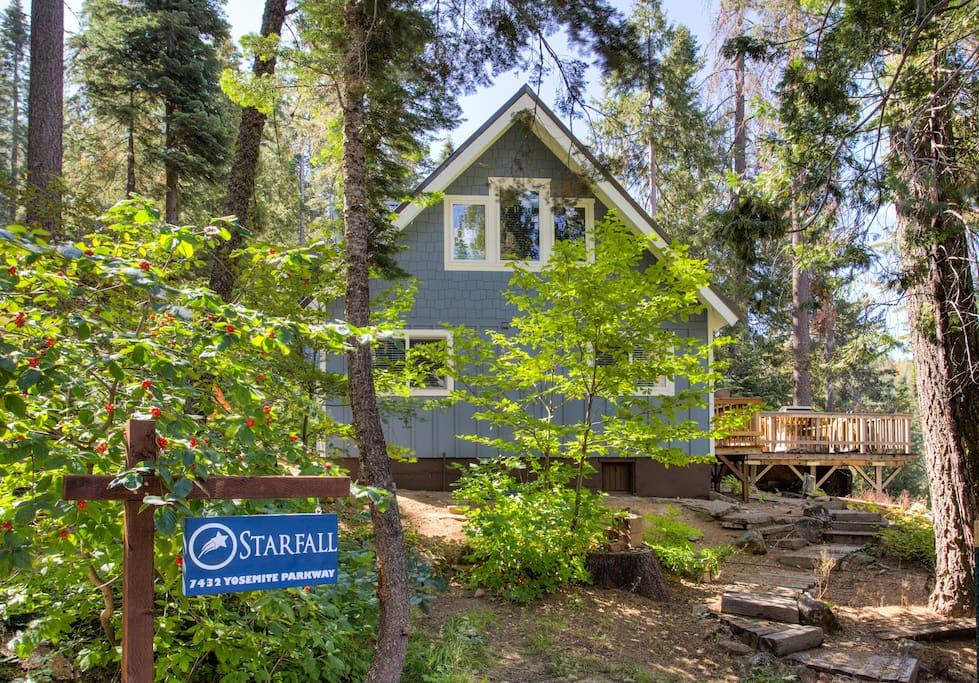 Yosemite's Starfall located in Yosemite West!