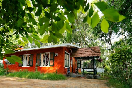 Experience Wayanad with professional photographer