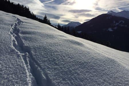Urige Almhütte (Aste) in Tirol mitten am Berg - Weerberg