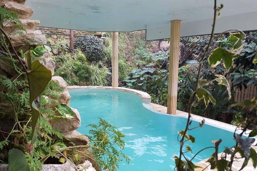 Cabane insolite a cachou piscine int rieure 32 cabanes louer ladev ze ville midi - Airbnb piscine interieure ...