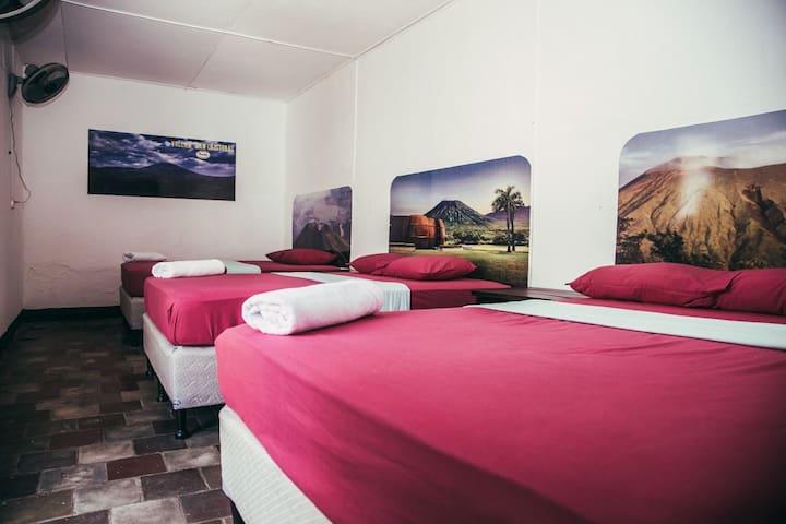 Habitación Privada Deluxe (3 camas matrimoniales)5