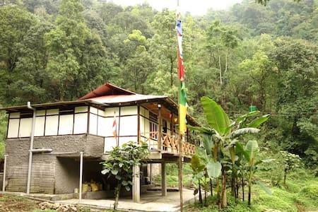 Dhungkar Homestay, Lingtam (Dinner included)