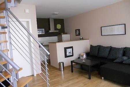 zentral - modern - gemütlich - Andernach - Apartment
