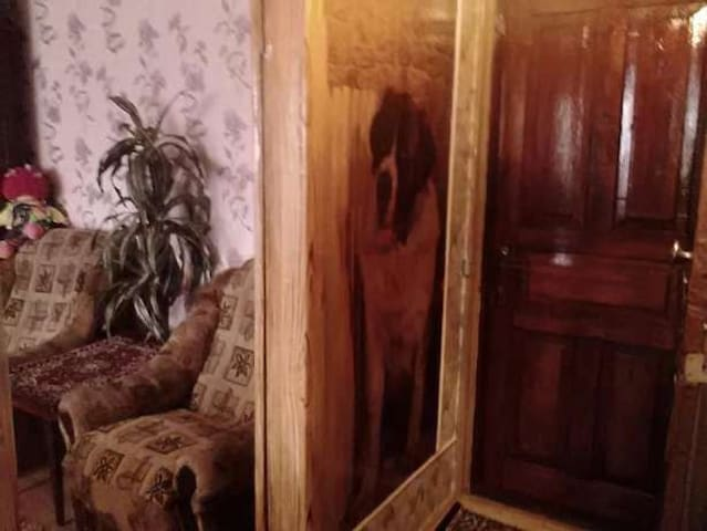 уютная квартира PAVLOGRAD - Pavlohrad - Daire