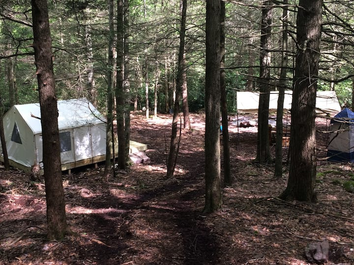 Tentrr Signature Site - Retreat on Bear Creek