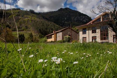 Habitación doble en el centro de Asturias