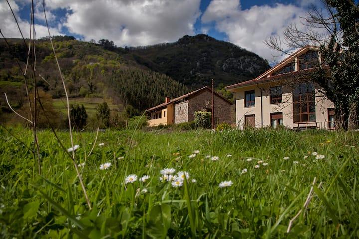 Habitación para 2 en el centro de Asturias
