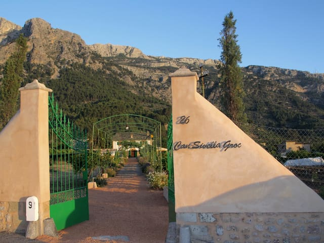 Can Sivella Groc - Finca with garden, pool and wine cellar in Soller,WIFI GRATIS
