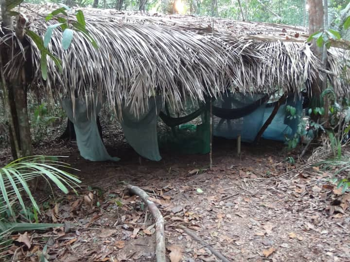 Experience The Amazonia camping