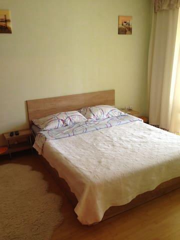 Nice and clean apartment - Chișinău - Apartment