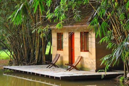 Raintree Cottage