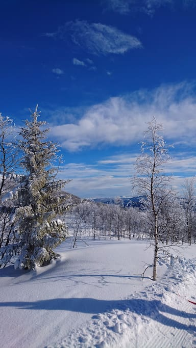 Winter  - the most beautiful nature