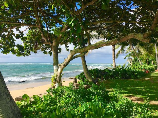North Shore Beachfront Home - Kahuku - Dom
