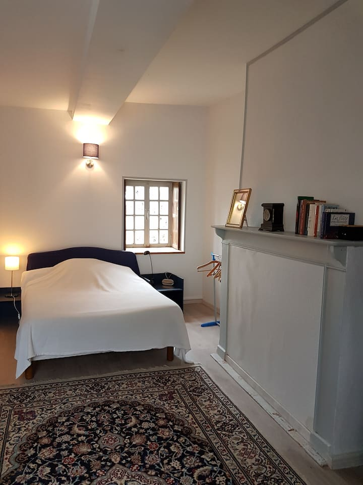 Une grande chambre , deux fenêtres dont une sur la rue du village. Une petite salle de bain attenante. Le wc est à mi étage. Vous serez seule dans cette maison.