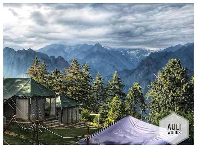 Auli Woods - Luxury camping in Auli Himalayas