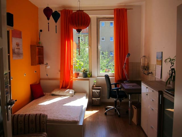 Light, cosy room in the middle of Bayreuth - Bayreuth - Apartmen