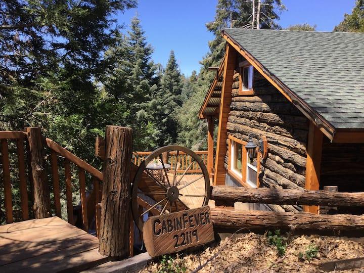 Cabin Fever Mountain Getaway