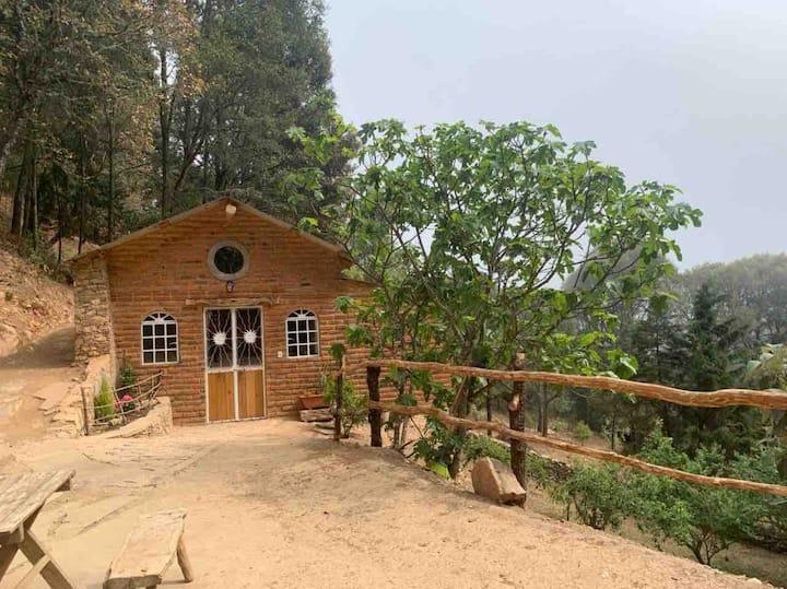 Cabaña el Duraznillo - El Bosque de las Ranas