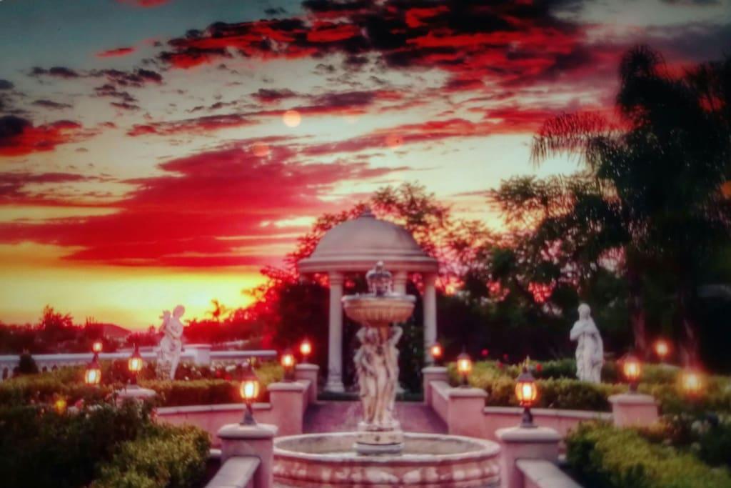 The luminous garden at dusk.