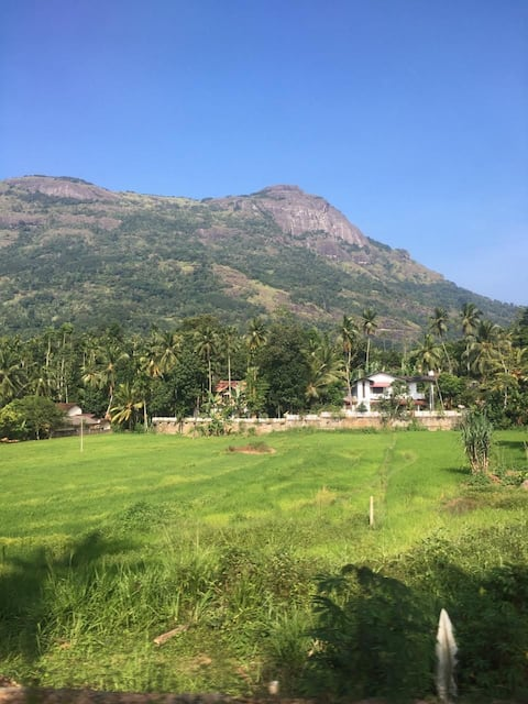 Awesome place in village in Kandy