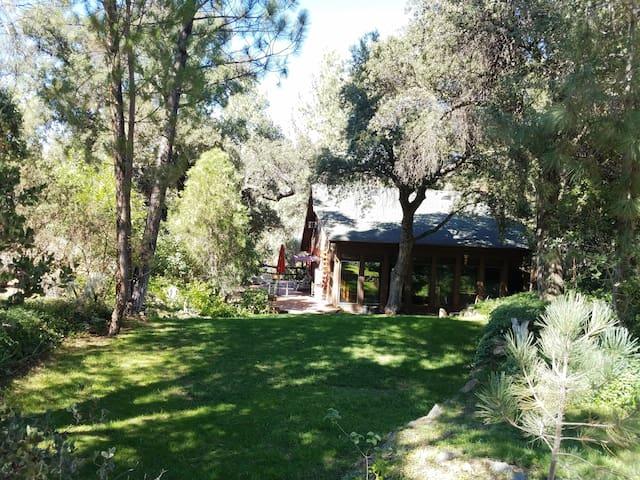Charming Cabin near USFS Trails - Pine Valley - Blockhütte