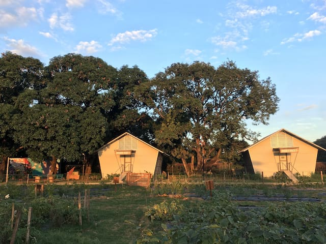 Happynest Farm Bnb (Can accommodate 36 guests)