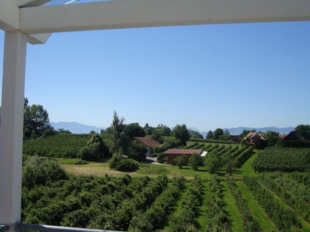 Beautiful view / Schöne Aussicht - Wasserburg (Bodensee) - Byt